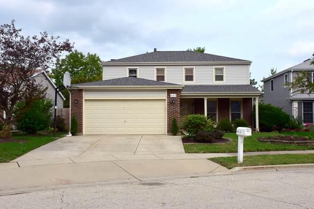 685 Randi Lane, Hoffman Estates, IL 60169 (MLS #10862822) :: John Lyons Real Estate