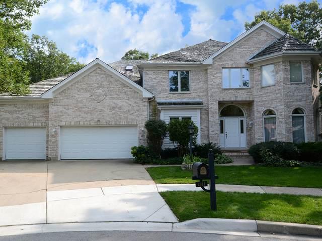 4811 Amaarja Court, Palatine, IL 60067 (MLS #10862853) :: Suburban Life Realty
