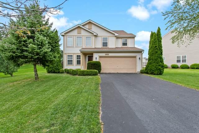 452 Barn Swallow Drive, Lindenhurst, IL 60046 (MLS #10862861) :: John Lyons Real Estate