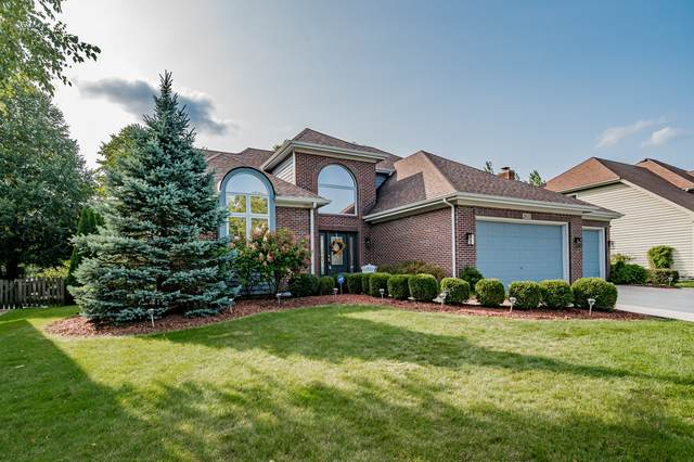2651 Salix Circle, Naperville, IL 60564 (MLS #10862888) :: Property Consultants Realty