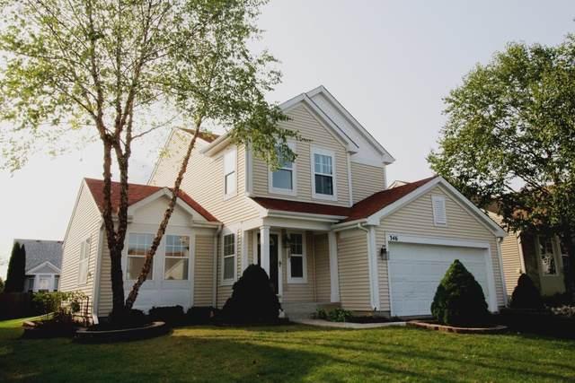 346 Prairie Mist Drive, Round Lake, IL 60073 (MLS #10862989) :: Ryan Dallas Real Estate