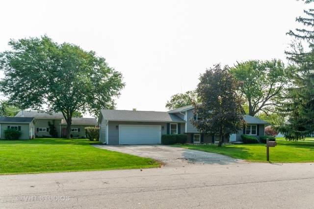 20651 N Elizabeth Avenue, Prairie View, IL 60069 (MLS #10863021) :: Suburban Life Realty