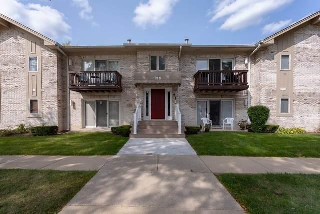 918 Rogers Street #103, Downers Grove, IL 60515 (MLS #10863257) :: The Dena Furlow Team - Keller Williams Realty