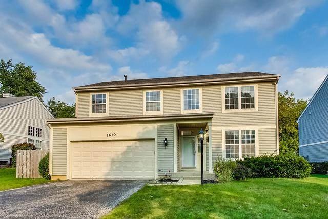 1619 Millstone Lane, Gurnee, IL 60031 (MLS #10863385) :: John Lyons Real Estate