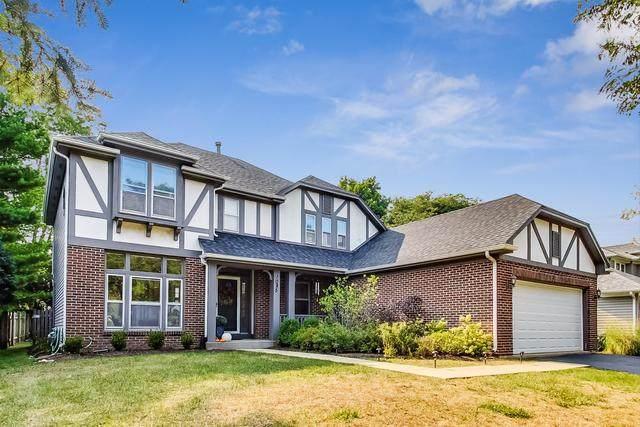 1085 Warren Lane, Vernon Hills, IL 60061 (MLS #10863468) :: Suburban Life Realty