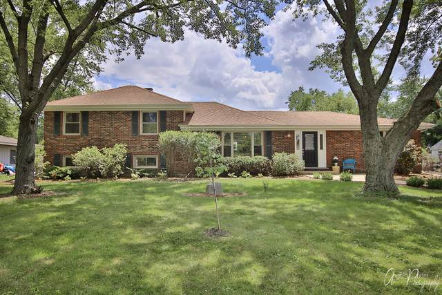 303 E Camp Mcdonald Road, Prospect Heights, IL 60070 (MLS #10863811) :: Littlefield Group