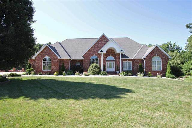 Address Not Published, Troy, IL 62294 (MLS #10865868) :: John Lyons Real Estate