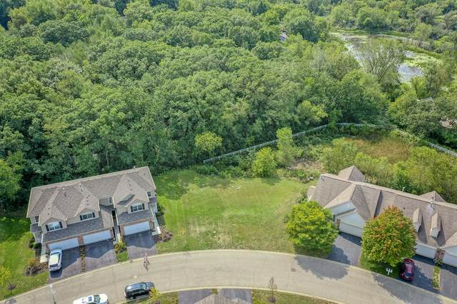 7053 Hidden Green Circle, Fox Lake, IL 60020 (MLS #10870988) :: Property Consultants Realty