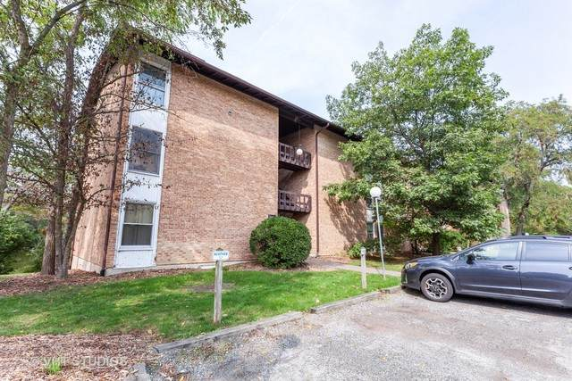 5531 E Lake Drive E, Lisle, IL 60532 (MLS #10870991) :: John Lyons Real Estate