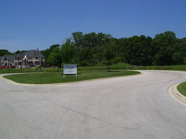 37W206 Deer Pond Court, St. Charles, IL 60175 (MLS #10873645) :: Lewke Partners