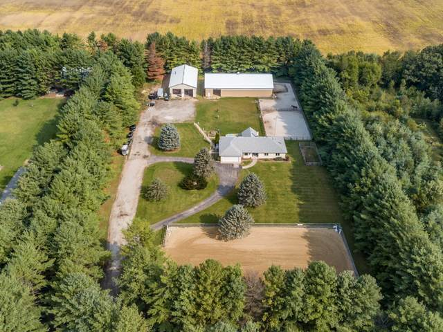 6810 Mccullom Lake Road, Wonder Lake, IL 60097 (MLS #10874725) :: The Wexler Group at Keller Williams Preferred Realty
