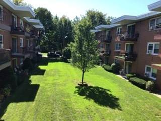 5432 W Windsor Avenue 2F, Chicago, IL 60630 (MLS #10876514) :: Property Consultants Realty