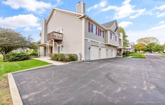 351 Windsor Court D, South Elgin, IL 60177 (MLS #10876666) :: John Lyons Real Estate