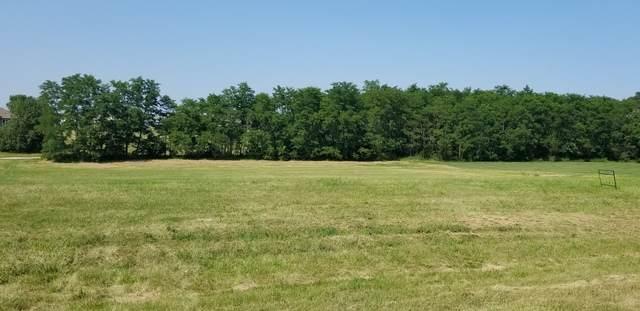 15979 Whipple Place, Millbrook, IL 60536 (MLS #10876917) :: John Lyons Real Estate