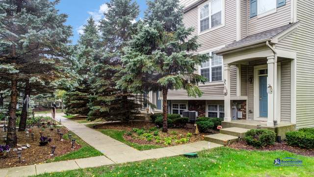 28760 W Pondview Drive, Lakemoor, IL 60051 (MLS #10876935) :: Touchstone Group