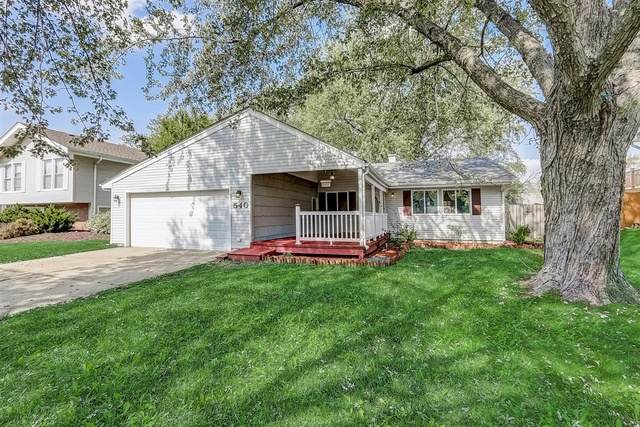 540 Emerson Circle, Bolingbrook, IL 60440 (MLS #10876960) :: John Lyons Real Estate