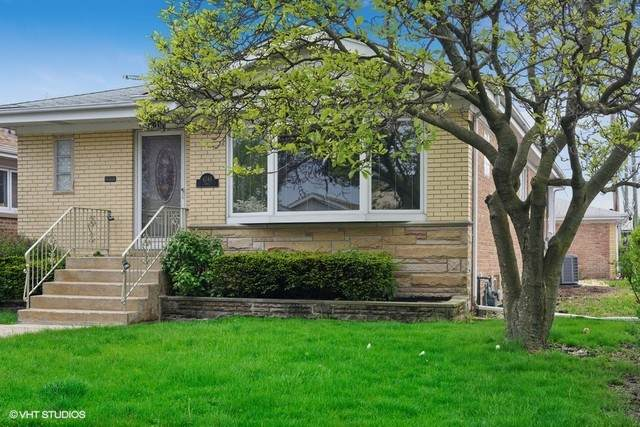 4746 N Odell Avenue, Harwood Heights, IL 60706 (MLS #10877223) :: John Lyons Real Estate