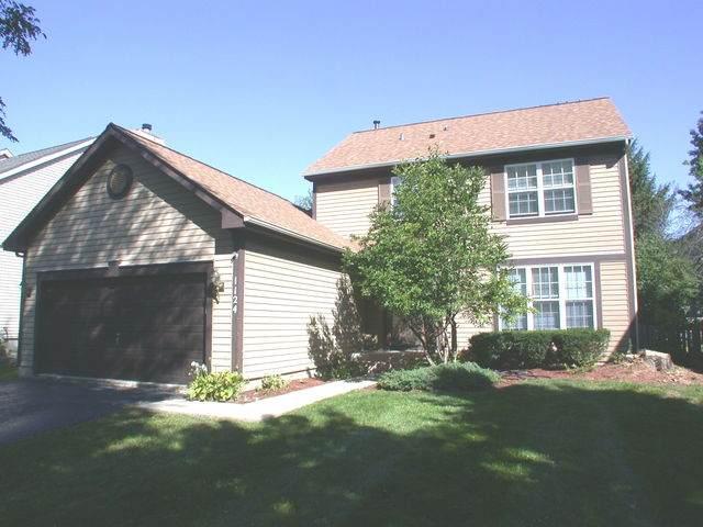 1124 Little Falls Drive, Elgin, IL 60120 (MLS #10877311) :: John Lyons Real Estate