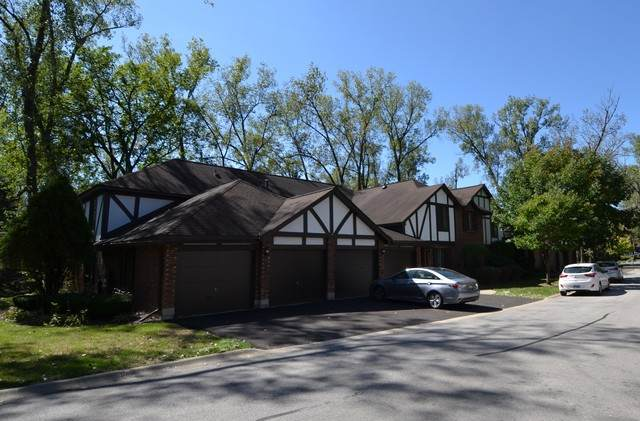 8127 Chestnut Drive 58A, Palos Hills, IL 60465 (MLS #10877357) :: John Lyons Real Estate