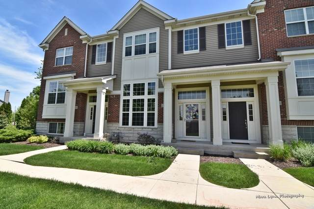 2549 Dunraven Avenue, Naperville, IL 60540 (MLS #10877775) :: John Lyons Real Estate