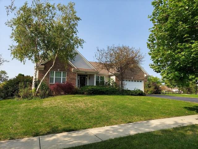 1012 Nighthawk Way, Cary, IL 60013 (MLS #10877820) :: Property Consultants Realty