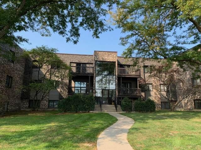1462 Stonebridge Circle F5, Wheaton, IL 60189 (MLS #10877851) :: BN Homes Group