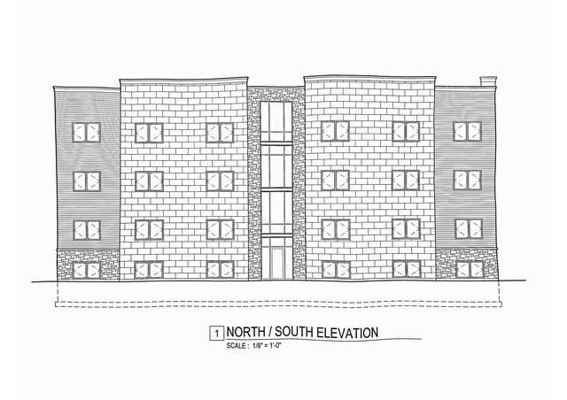 4733 S Michigan Avenue, Chicago, IL 60615 (MLS #10878186) :: Property Consultants Realty
