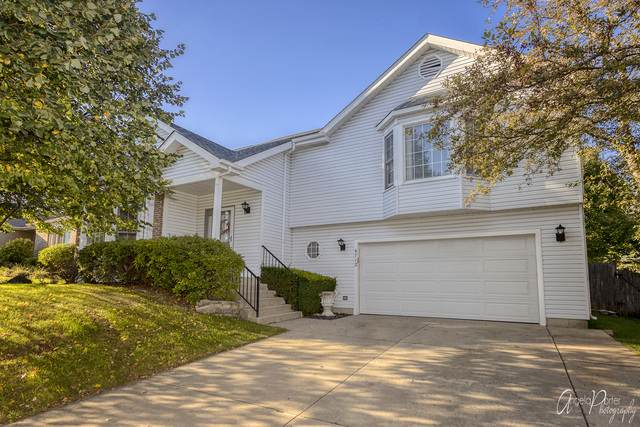 4712 Overland Trail, Mchenry, IL 60050 (MLS #10878381) :: Property Consultants Realty