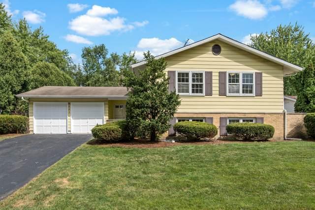 6625 Wainwright Drive, Woodridge, IL 60517 (MLS #10878491) :: Century 21 Affiliated