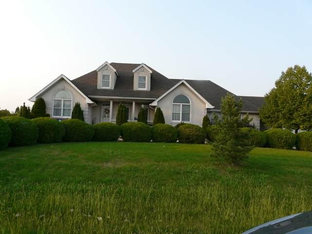 14730 Stonehaven Lane, Homer Glen, IL 60491 (MLS #10878532) :: RE/MAX IMPACT