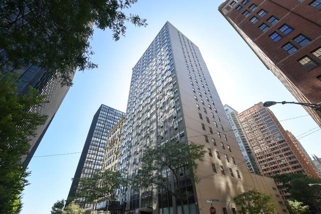 253 E Delaware Place 10E, Chicago, IL 60611 (MLS #10878724) :: Lewke Partners