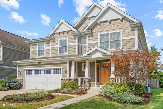925 Breiter Court, Bensenville, IL 60106 (MLS #10878842) :: Angela Walker Homes Real Estate Group