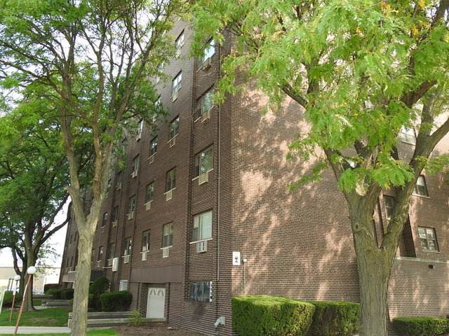 4600 N Cumberland Avenue #206, Chicago, IL 60656 (MLS #10878925) :: Helen Oliveri Real Estate