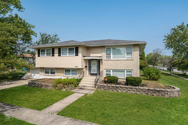 2640 200th Street, Lynwood, IL 60411 (MLS #10879033) :: The Wexler Group at Keller Williams Preferred Realty