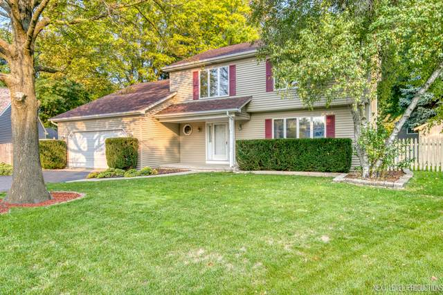 1317 Fieldstone Court, Naperville, IL 60564 (MLS #10879288) :: Property Consultants Realty