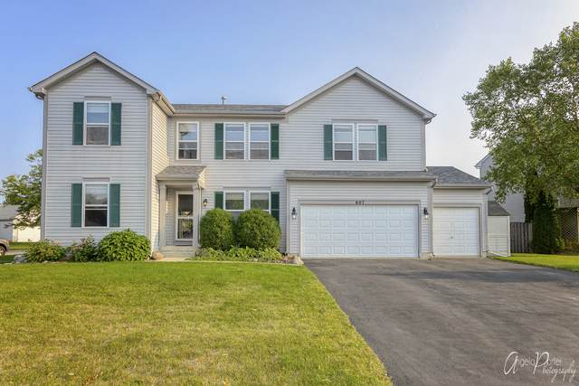 607 Cameron Drive, Antioch, IL 60002 (MLS #10879338) :: BN Homes Group