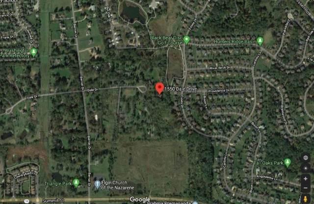 1550 Dale Drive, Elgin, IL 60120 (MLS #10879399) :: Century 21 Affiliated