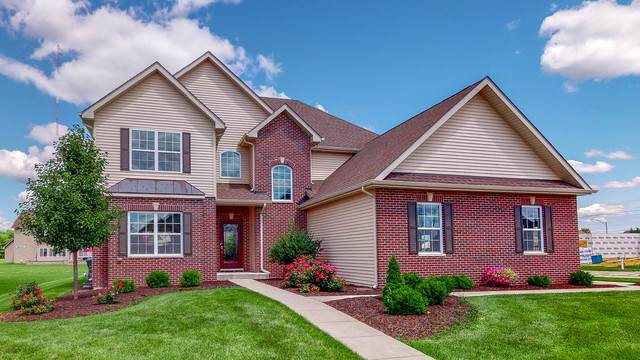 27232 W Deer Hollow Lane, Channahon, IL 60410 (MLS #10879754) :: Littlefield Group