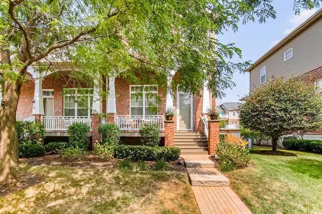 1163 River Bend Lane, Lisle, IL 60532 (MLS #10879777) :: John Lyons Real Estate