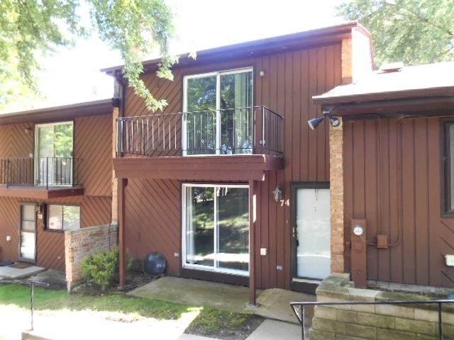 74 North Avenue, Fox Lake, IL 60020 (MLS #10879842) :: John Lyons Real Estate