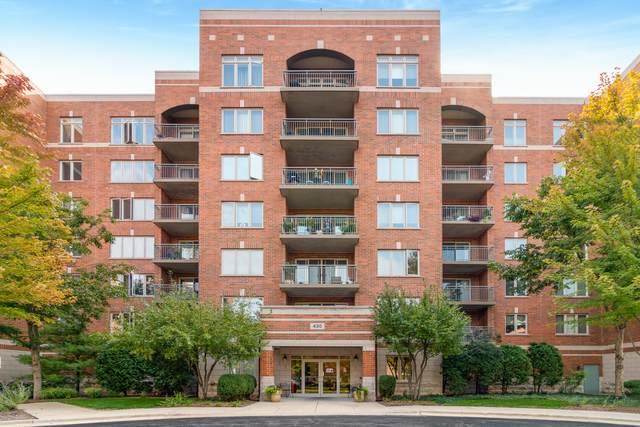 430 S Western Avenue #411, Des Plaines, IL 60016 (MLS #10880282) :: John Lyons Real Estate