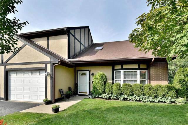 1970 Miner Street D, Des Plaines, IL 60016 (MLS #10880660) :: Helen Oliveri Real Estate
