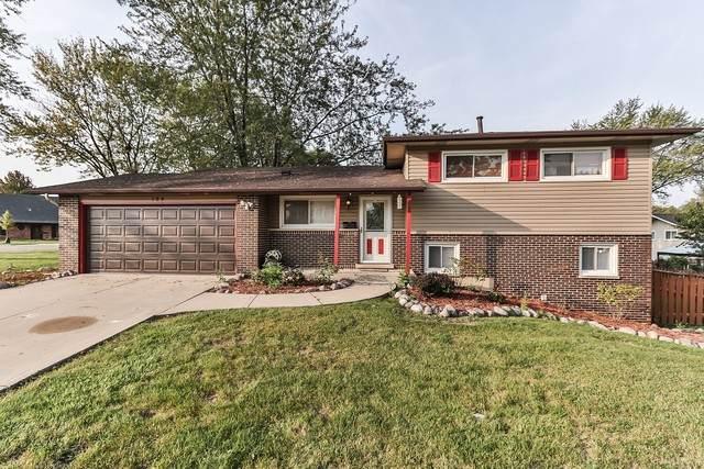 109 W Beech Drive, Schaumburg, IL 60193 (MLS #10880976) :: John Lyons Real Estate