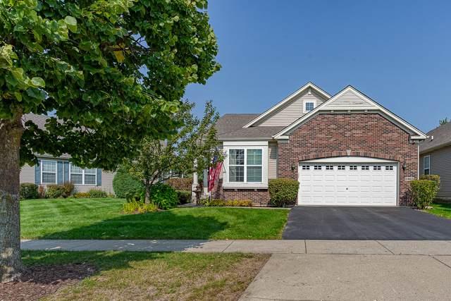 1865 Eton Drive, Hoffman Estates, IL 60192 (MLS #10881059) :: John Lyons Real Estate