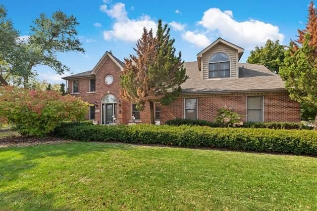 4204 White Eagle Drive, Naperville, IL 60564 (MLS #10881216) :: Ryan Dallas Real Estate