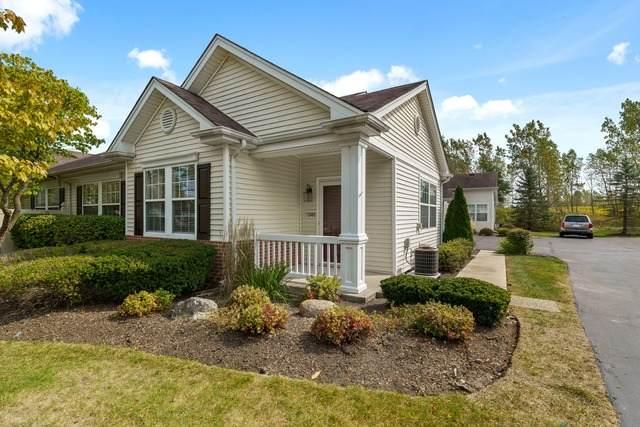 13465 Michigan Avenue, Huntley, IL 60142 (MLS #10881349) :: John Lyons Real Estate