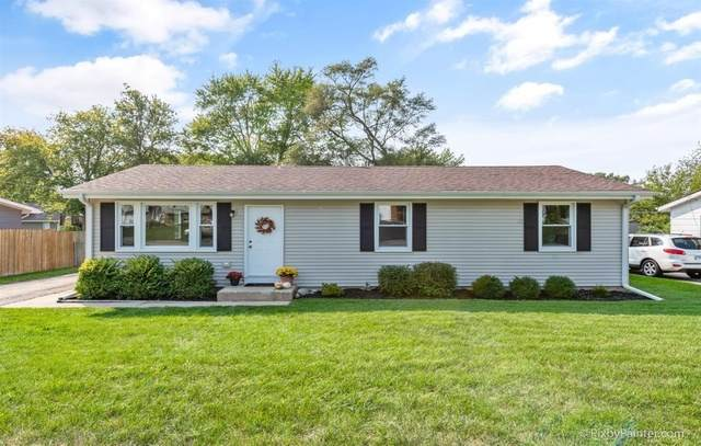 6717 Hunters Path, Cary, IL 60013 (MLS #10881407) :: John Lyons Real Estate