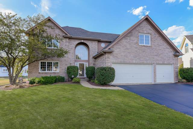 2907 Sibling Court, Naperville, IL 60564 (MLS #10881465) :: Littlefield Group
