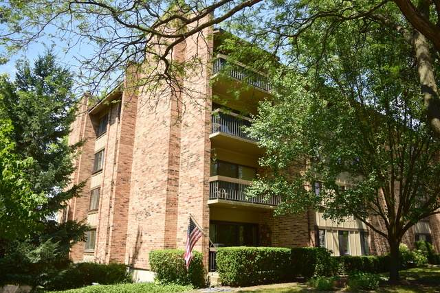 301 Lake Hinsdale Drive #313, Willowbrook, IL 60527 (MLS #10881517) :: Littlefield Group