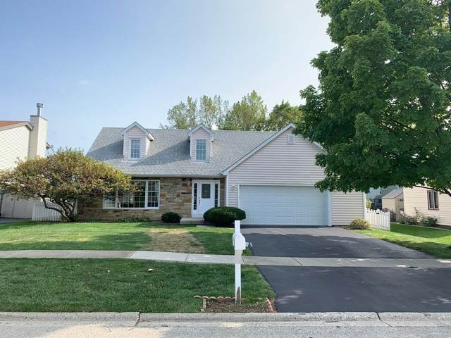 207 Foxfire Drive, Lake Zurich, IL 60047 (MLS #10881559) :: Touchstone Group